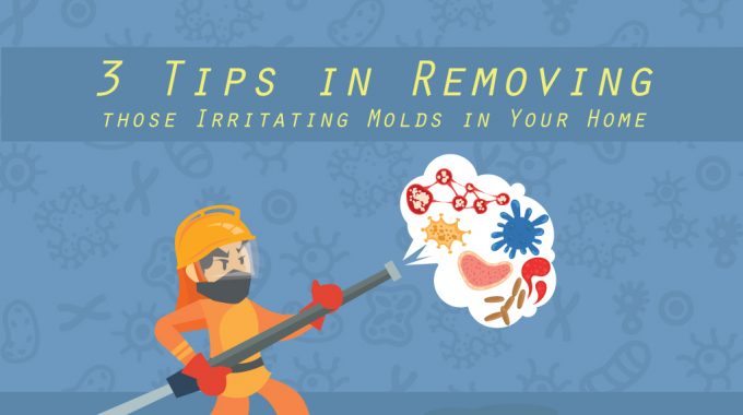 3 Tips in Removing those Irritating Molds in Your Home