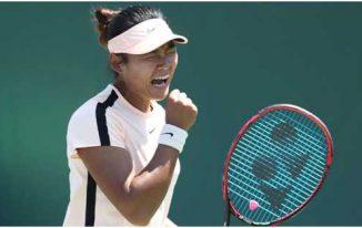 Tennis News – Online Update Guide