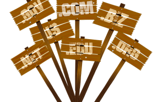 8 Things to Consider While Choosing a Domain Name