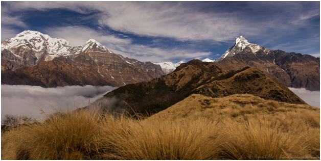 Annapurna Region Trek, Annapurna Trek